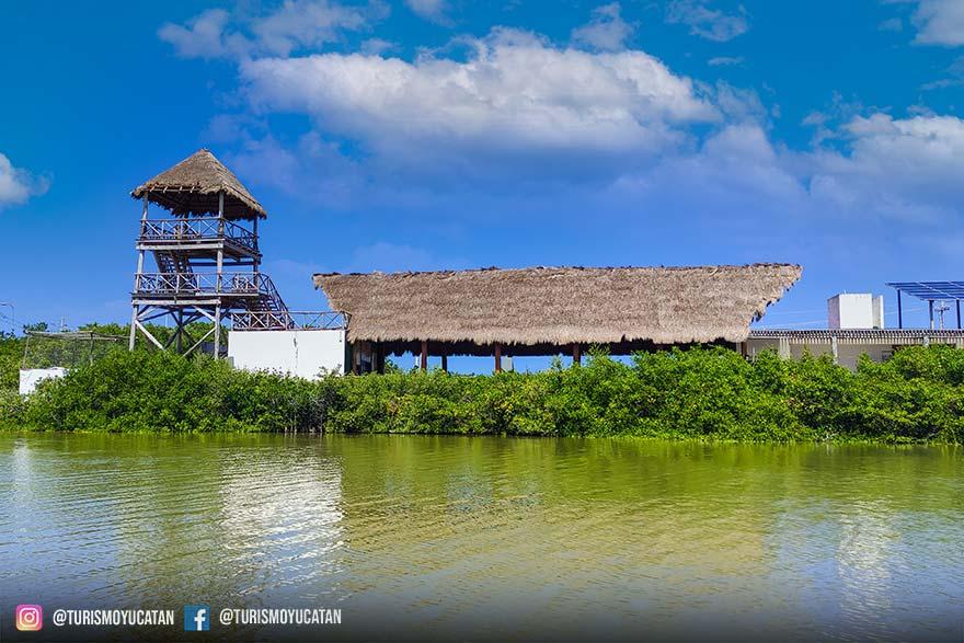 Ecoturismo en El Corchito, Cenotes El Corchito, Cenote Venado, Cenote Pajaros