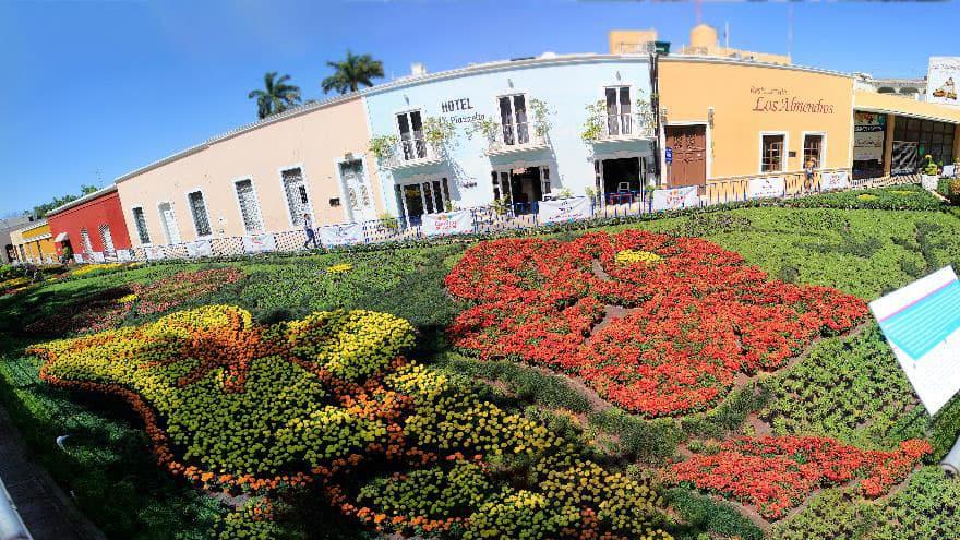 Camino de flores en m rida for Bazar la iberica