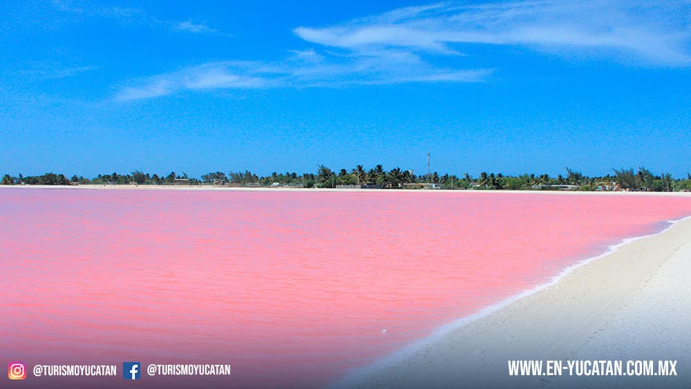 Las Coloradas Yucatan, Playas Yucatecas